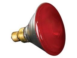 LAMP80P38SR