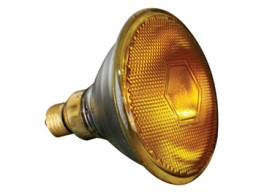 LAMP80P38SY