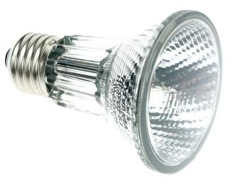LAMP50P20SP